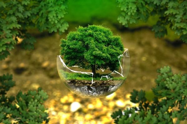 img_environmental-protection-326923_1920.jpg