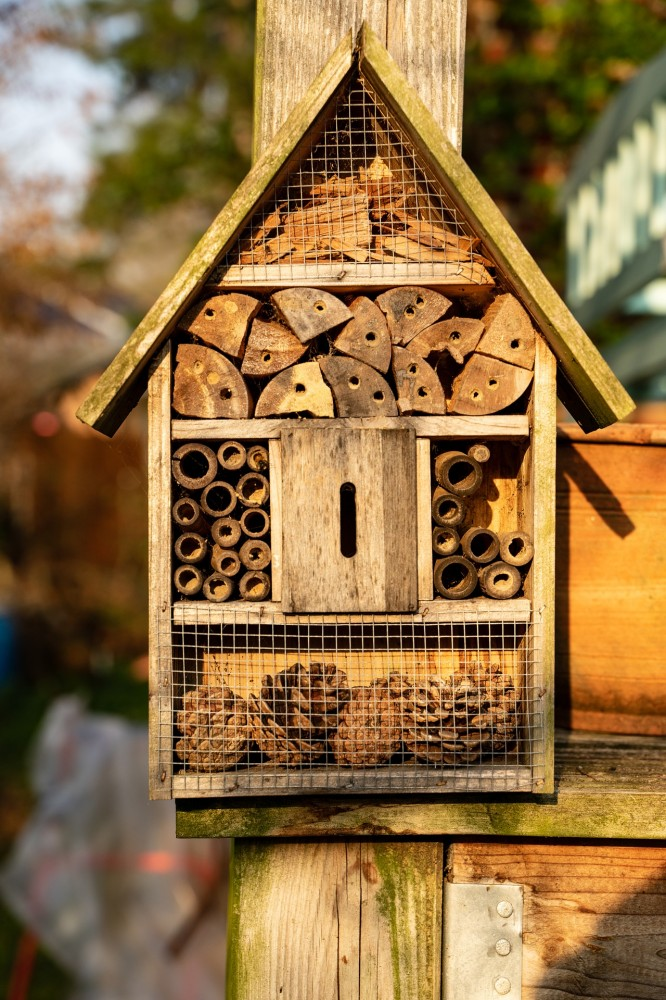insect-hotel-41105131920-1